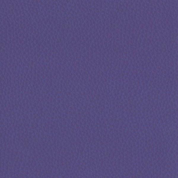 Fabric 02 Dollaro Amethyst 36
