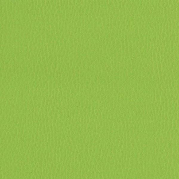Fabric 02 Dollaro Apple Green 38
