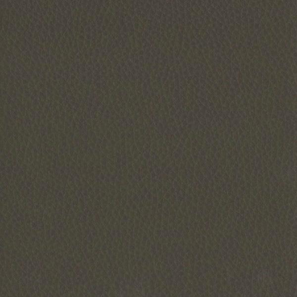Fabric 02 Dollaro Brown 02