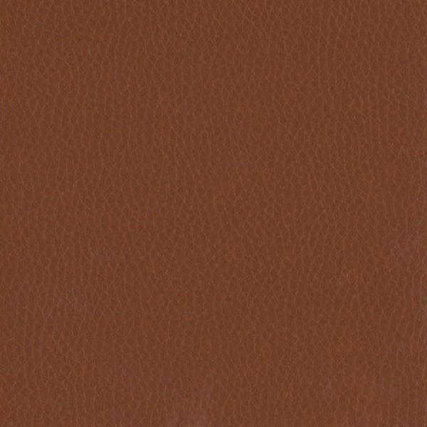 Fabric 02 Dollaro Chestnut 10