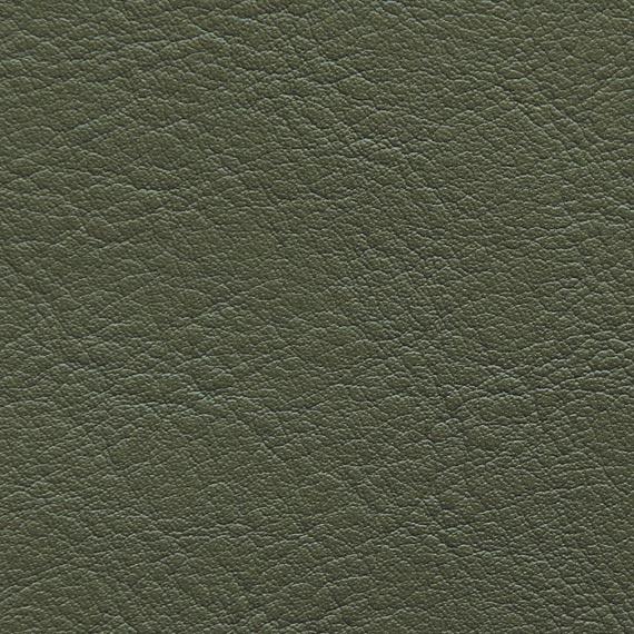 Fabric 04 Aston 204 Moss