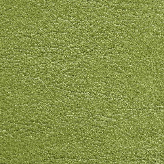 Fabric 04 Aston 226 Lime