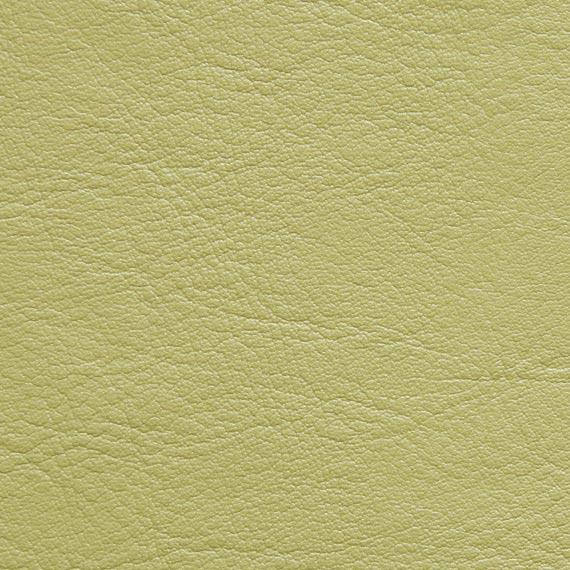 Fabric 04 Aston 233 Pistachio