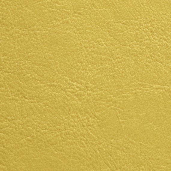 Fabric 04 Aston 238 Citrus